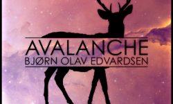 Bjørn Olav Edvardsen: 'Avalanche'