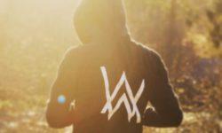 SONG: Alan Walker – 'Faded'