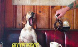 SONG: anton. feat HICARI – 'I Can´t Stop (macchiato)'