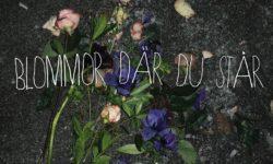 INTRODUCING: Gammal – 'Blommor Där Du Står'
