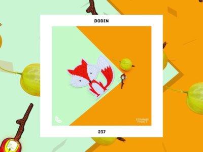 SONG: Bodin – '237'